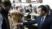 Agricultores franceses protestan ante Macron por el acuerdo UE-Mercosur