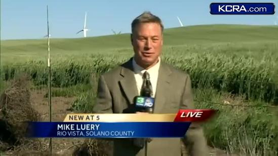 Alternative energy gets a boost from the wind in California