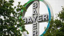Chinesen werben um Tierarzneisparte von Bayer