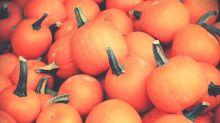 Pumpkin power: 6 health benefits to Halloween's statement squash