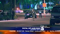 2 Dead in Separate Hit-and-Runs in San Fernando Valley