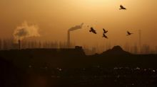 Global CO2 emissions show biggest ever drop in first half of 2020