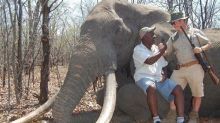 Public outcry as huge elephant killed for sport in Zimbabwe