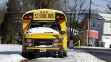 Students, 8 and 9, stop their school bus after the driver collapses: 'The two boys just reacted'