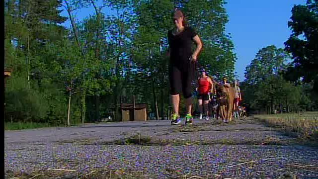 Doggie Bootcamp