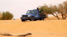 Niger: plusieurs humanitaires de l'ONG Acted parmi les Français tués