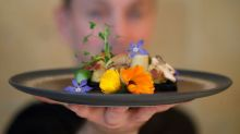 French restaurant serves up food of the future: insects