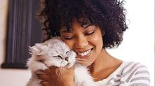 How to Choose a Pet When You Have Allergies