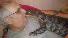 Man's emotional support animal helps him with depression. It just happens to be a 5-foot-long alligator.