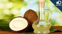 Is Coconut Oil Really Healthy? - DNews