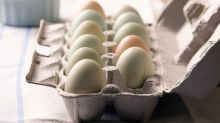 Singapore has plans for alternative sources if Malaysia limits egg exports: AVA