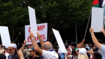 Demonstrators Rally for Palestine at White House