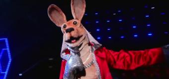 'Masked Singer' Kangaroo is infamous reality star