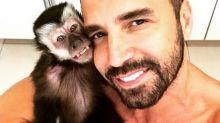 Latino transforma cinzas do macaco Twelves em diamante: 'Estou muito emocionado'