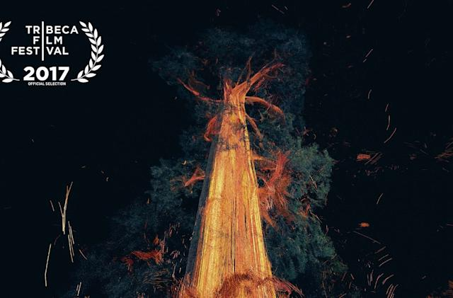 I smelled and hugged a tree in VR, because art