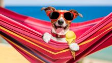 The Summer Holidays Are Here: How To Take Great Holiday Photos