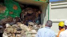 再次拒絕洋垃圾 斯里蘭卡將242個貨櫃廢棄物送返英國