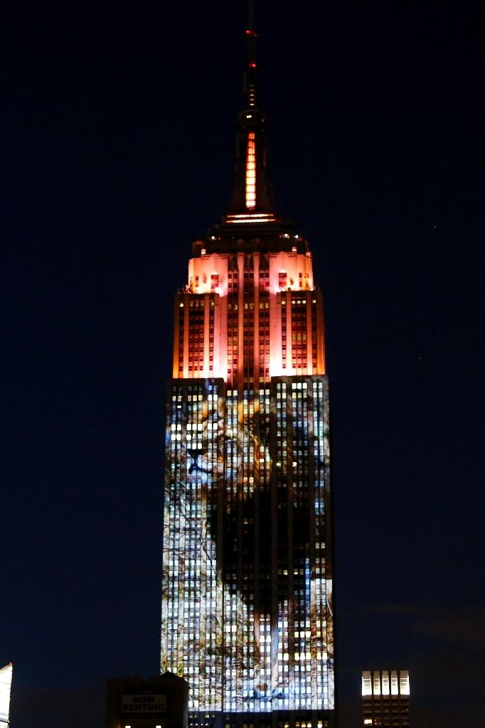 An image of Cecil the lion, whose killing has sparked international outrage, was prime among animals whose pictures covered 33 floors of the southern face of one of the world's most famous landmarks in an eight-minute video loop (AFP Photo/Kena Betancur)