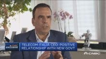 No day-to-day intervention from government: Telecom Itali...