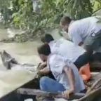 Wildlife rescuers save baby rhino from flood in India's Assam province