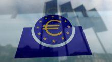 ECB had 'heated' debate on inflation target, Holzmann says