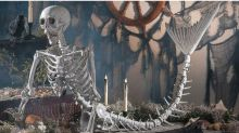 This 6-Foot Mermaid Skeleton Will Be the Star of Your Halloween Decorations