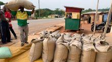 Cacao : quatre questions pour comprendre la crise