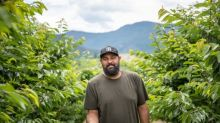 Not so sweet season for B.C. farmers, cherry pickers due to weather and COVID-19