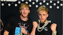 Fears YouTuber Jake Paul may have crushed rare turtle eggs during beach buggy stunt in Puerto Rico