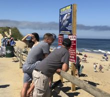 Shark attack victim was engineering student, outdoorsman