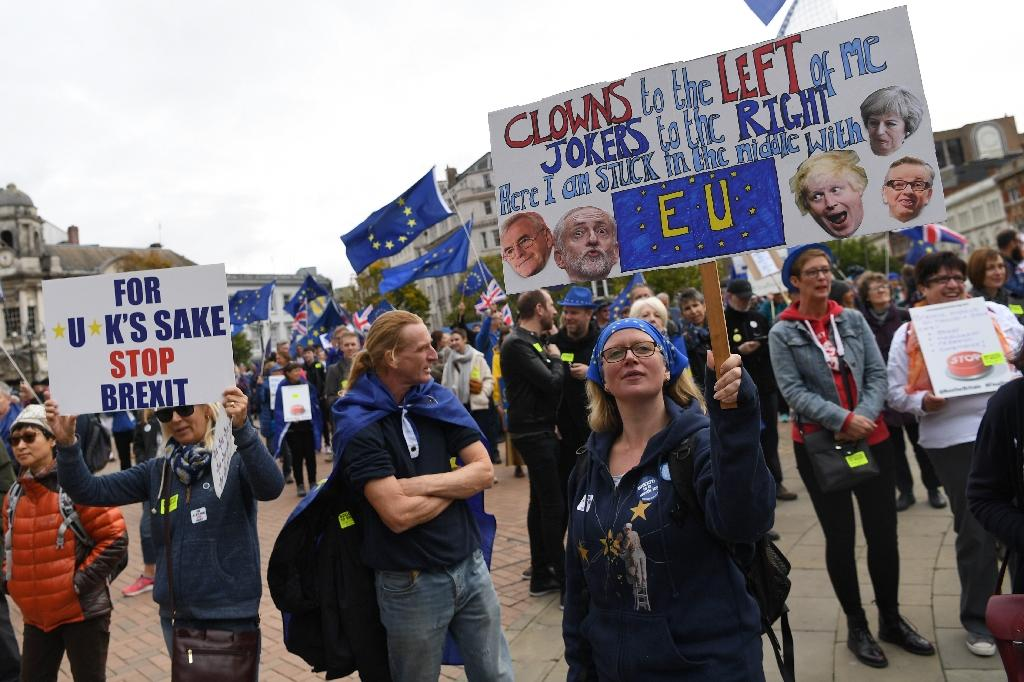Outside the conference centre, hundreds of people held signs both backing and opposing Brexit (AFP Photo/Paul ELLIS)