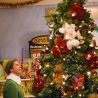 The great Christmas tree debate: Are real or fake firs better for the environment?