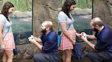 This couple had the best photobomb in their proposal pic