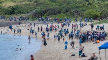 Massive beach clean-up for Hong Kong sea turtles