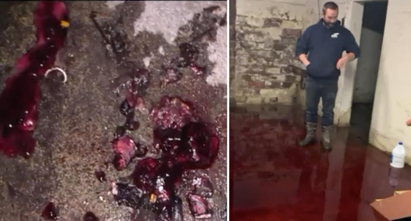 Horror movie scenes as blood floods man's basement