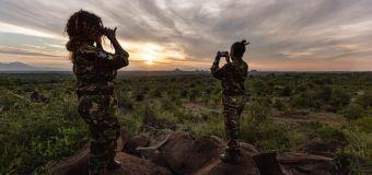 Smartphones used to create 'virtual rangers' to deter poachers