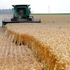 Trump's New $16 Billion Bailout for Farmers