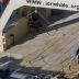 Slaughtered Whale Found On Japanese Ship In Antarctic