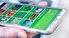 App verrät Saison von heimischen Gemüse