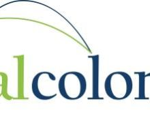 Colony investments ltd types of foreign investment in china
