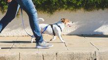 El impacto de las enfermedades en la forma de caminar