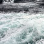 Oceans losing oxygen at unprecedented level, study suggests