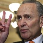 Chuck Schumer Urges Congressional Vote Rejecting Obamacare Ruling
