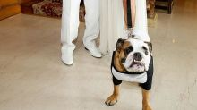 Playboy Mansion on Sale for $200 Million