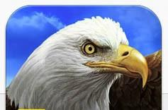 Daily iPhone App: National Geographic Birds: Field Guide to North America