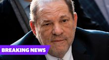 Queen strips Harvey Weinstein of CBE following his sex offence conviction