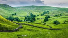 El Reino Unido se embarcará en una revolución agrícola tras el Brexit