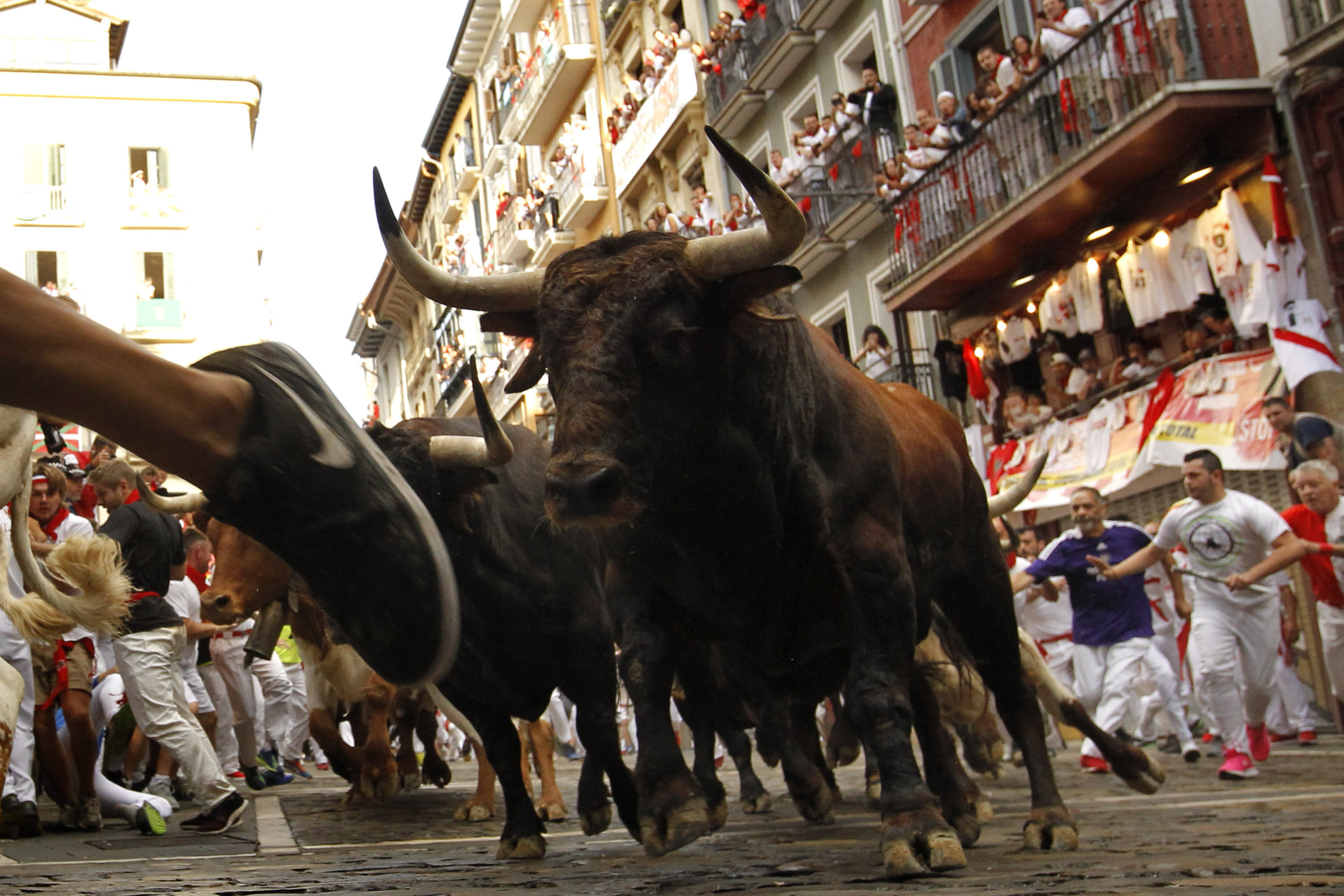 Run In With Pamplona Bull Made American Fear For My Life