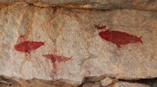 Ancient Rock Art Depicting Marine Animals Sheds Light On Hunter-Gathers' Strategies