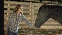 9 shocking movies that killed animals